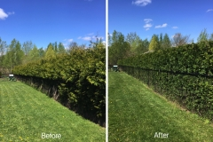Before:After 2